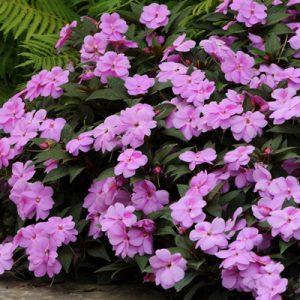 florific